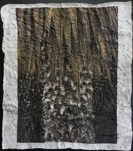 Estas imágenes dan fe de una peculiar sensibilidad ante la naturaleza y ante la ruina.  En la obra reciente de Gabriel, la ruina ha dejado de ser tratada como una curiosidad antropológica y ha devenido la expresión de una relación estética con el tiempo y la memoria.