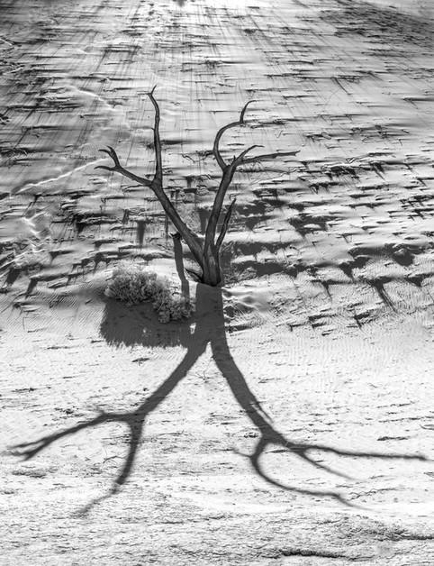 Sombra sobre Duna