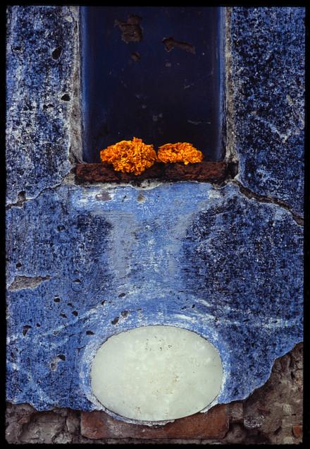 Nicho con 2 flores, 1973