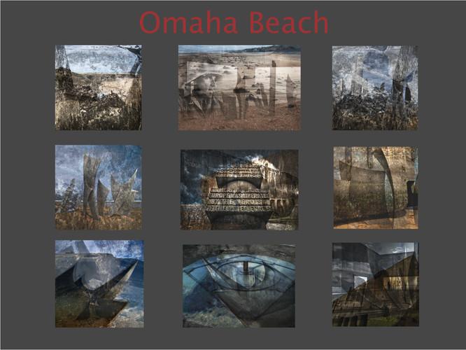 Omaha Panel.jpg