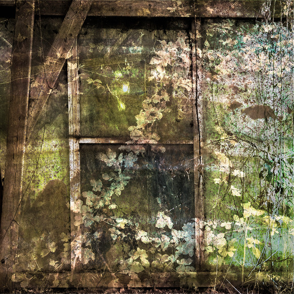 Glasshouses Potton_0456COMP.jpg