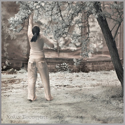 Dancers and Glasshouses_0156
