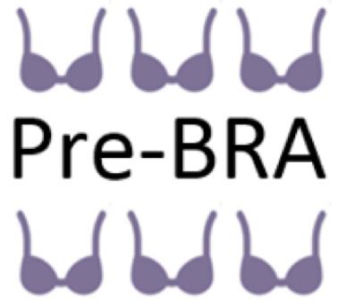 Pre_Bra_logo.png