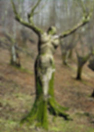7. tree woman.jpg
