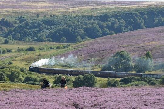 Yorks Moors train.JPG