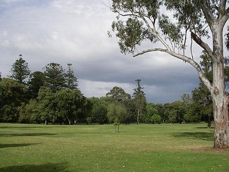 Botanic Park.JPG
