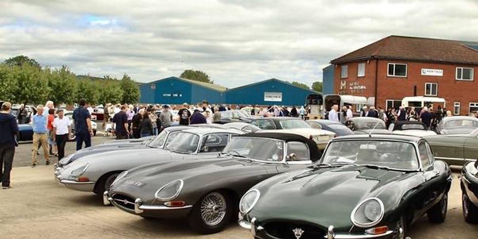 Jaguars at the Castle