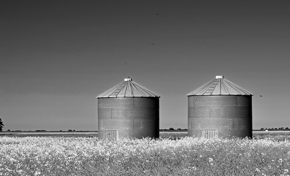 agriculture-architecture-b-w-1058398