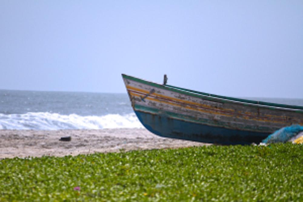 sea-beach-boat-grass