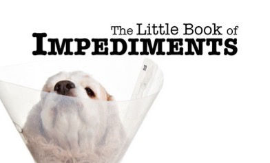 Intro to Dealing with Impediments