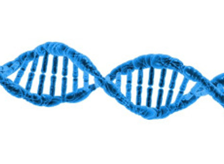 Team Genetics