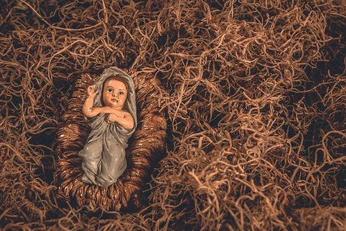 Chúa Giêsu Trong Máng Cỏ