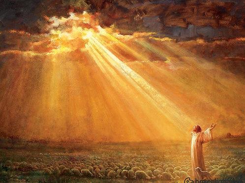 Chúa Giêsu Và Đàn Chiên Dưới Ánh Nắng
