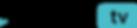 Düzy_TV_Logo_blk_let_no_bkg.png