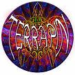 TERRAPIN-26_-head_edited-6psd.jpg