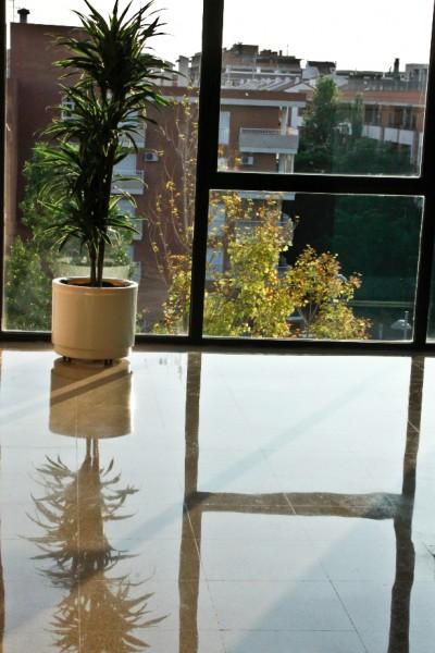 piso de terrazo - www.promolavado