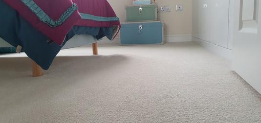 Bedrooms carpet post clean