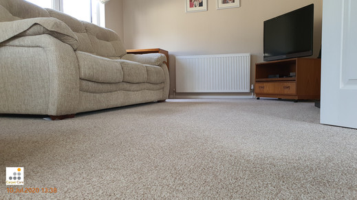 Deep Carpet Clean Results