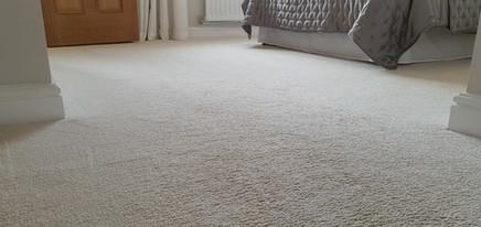 Carpets following deep steam clean