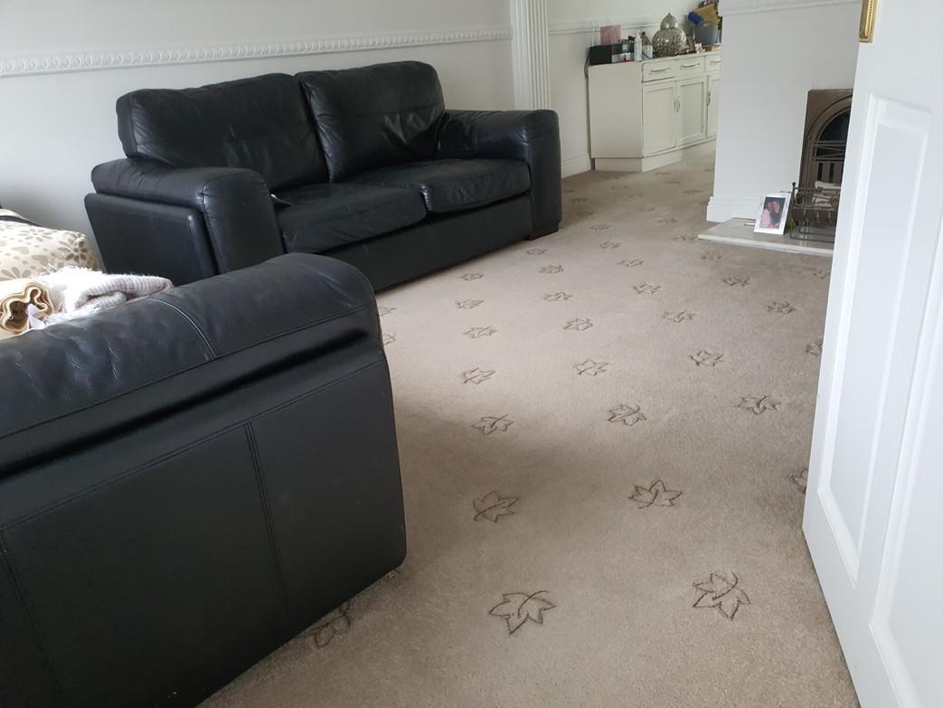Living Room Deep Clean June 2020