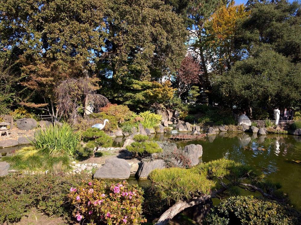 central park san mateo.jpg 2.jpg
