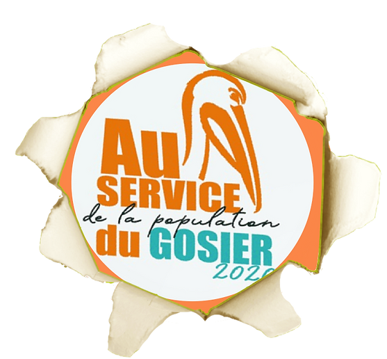 FOND_LOGO ACCEUIL 2.png