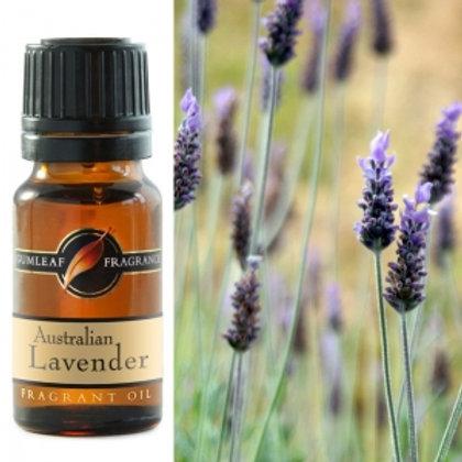Fragrant Oil - Lavender