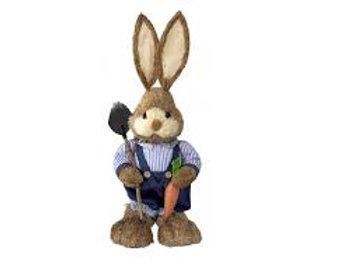 Boy Spade Bunny