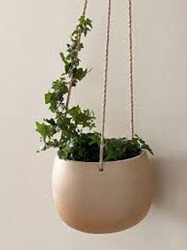 Robert Gordon Hanging Planter - Small