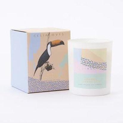 Celia Loves Candle - Japanese Honeysuckle