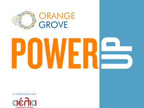 AELIA joins forces with the Orange Grove for an online Pre-Incubation Program