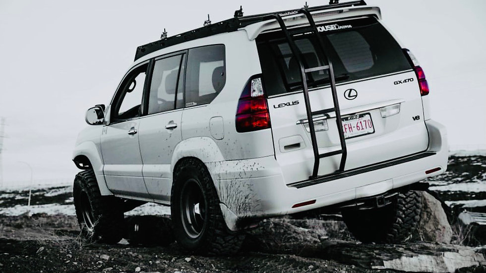 Lexus gx 470 rear ladder