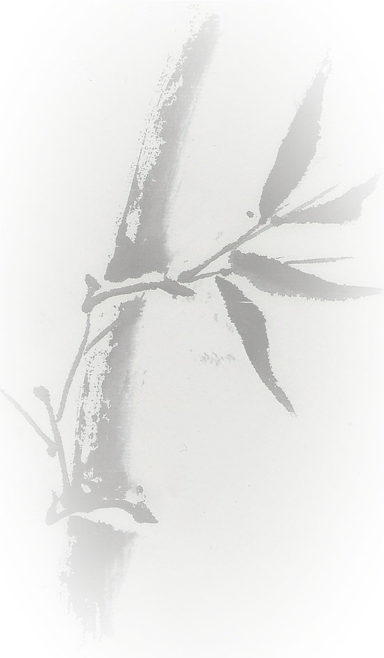 bamboo%20scan%20copy_edited.jpg