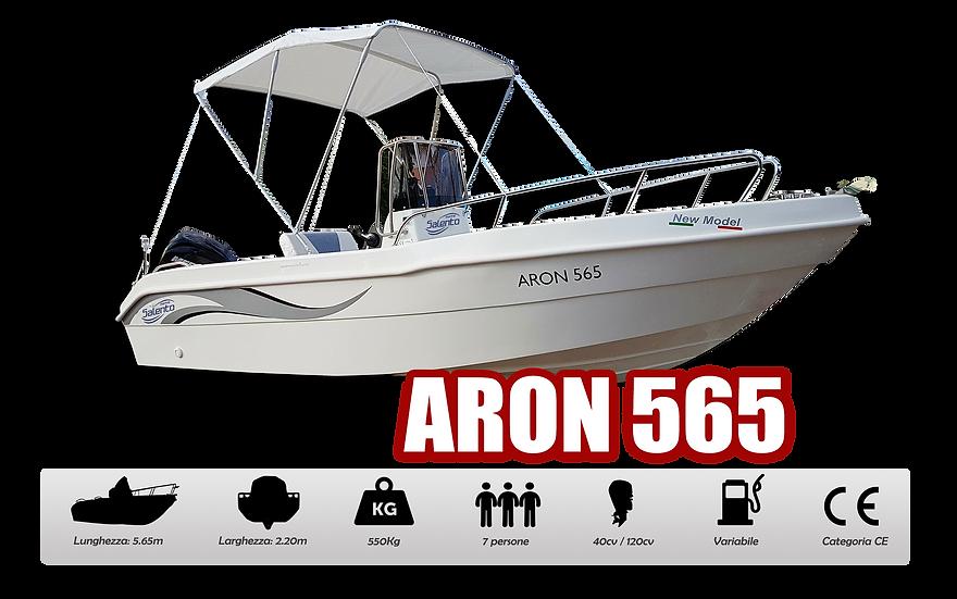 ARON 565