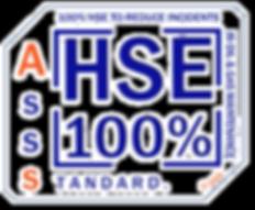 HSE-100% copy.png