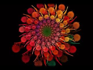 """""""So Many Flowers"""", il lato soffice e graffiante dei Fuzz Vegas"""