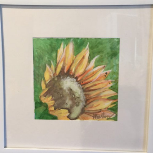 Original Watercolor Painting by Terry Mullen #2537