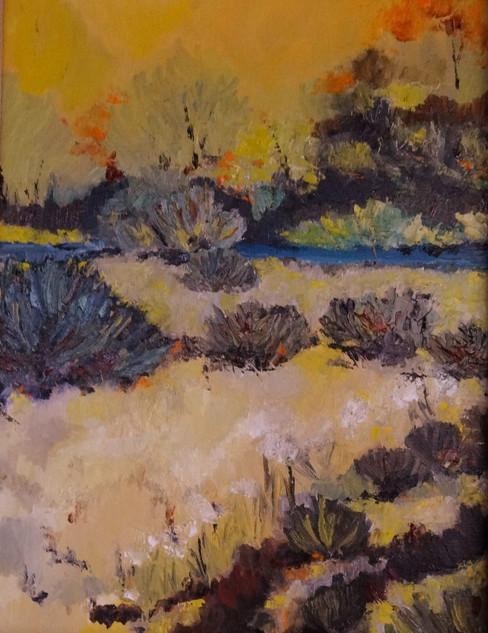 Summer Sage 11x14 Oil
