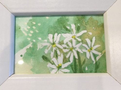Original Watercolor Painting by Terry Mullen #2555