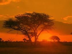 Sunrise_Matobo_Zimbabwe