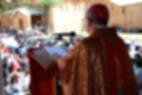 Bishop of Umzimkulu in Lourdes