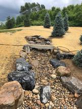 byrd lawn 2.JPEG