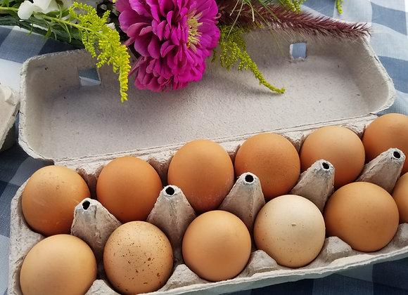 Free Range Chicken Eggs (1 Dozen Brown)