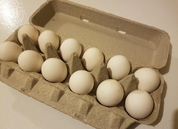 Free Range 1 Dozen White Eggs