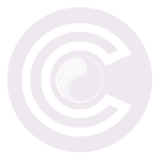 CindCEO_20%25icon_edited.png