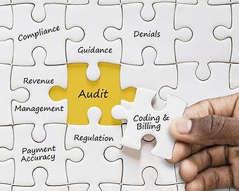 Audit Support (1).jpg