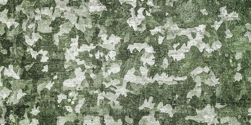 background-camouflage-pattern-877703-100