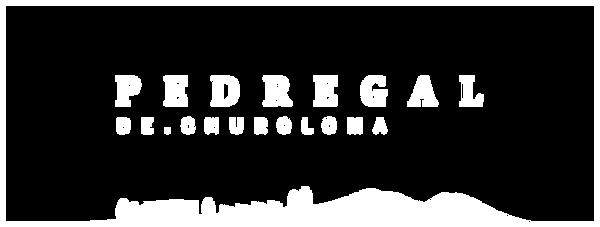 PEDR-marca-neg.png