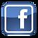 Facebook Profile Games Museum.png