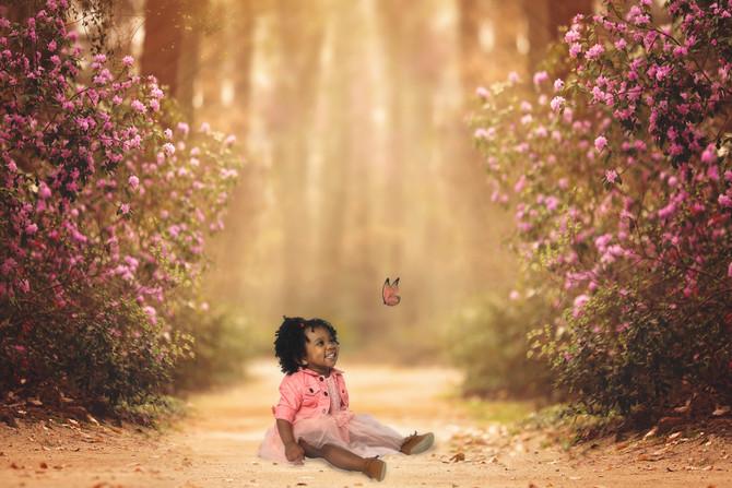 Whimsical Digital Background Shoot